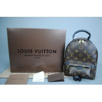 LOUIS VUITTON PALM SPRING CLASIC PM MİNİ BOY